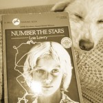 Numberstars