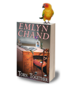 Torn Together by Emlyn Chand Giveaway (for you) and Eye Candy (for me)