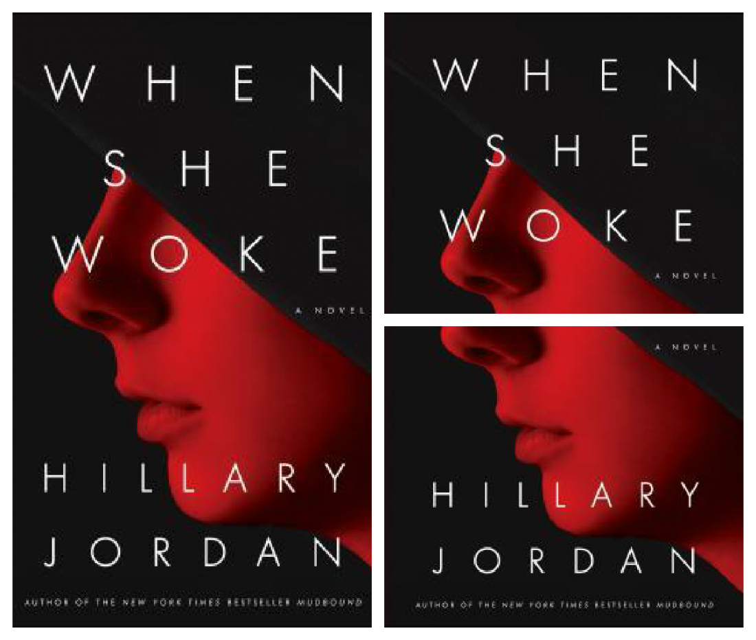 One Towne, One Book: When She Woke by Hillary Jordan