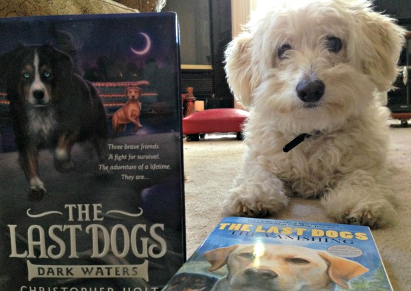 The Last Dogs Unconventional Librarian