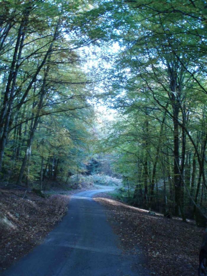 route de Creuse